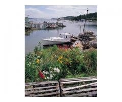 MAINE COASTAL PROPERTY: SPRUCE COVE FARM